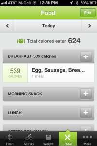 iPhone Food Intake